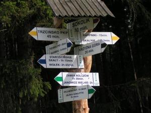 Turystyka zdrowotna