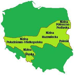 Niziny